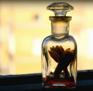 perfume viejo