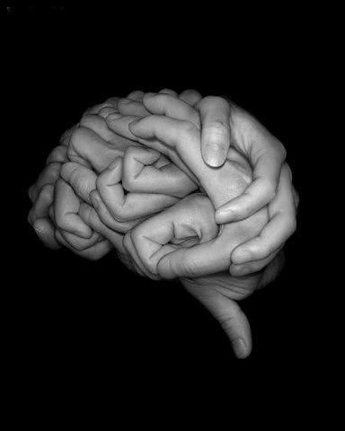 manos cerebro imagen