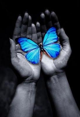 Mariposa Azul cuento