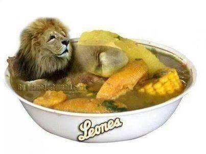 Caldo de león Escogido vs. Licey